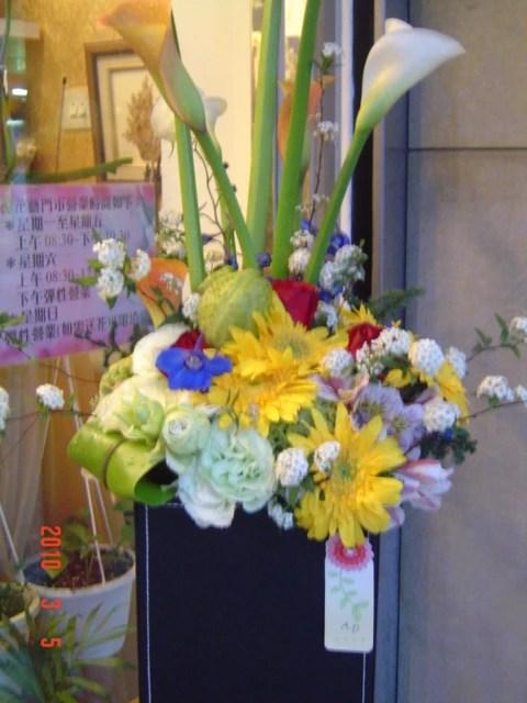 木棉花藝工作室 / 盆栽,花禮,花束,設計,花藝,禮品,景觀園藝,木棉花,氣球