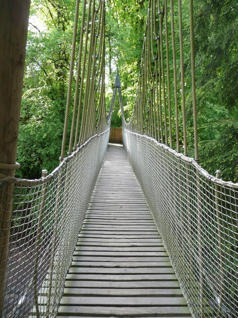 Rope bridge Alnwick Garden  Humphrey Bolton  Geograph