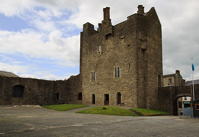 Castles Of Munster Roscrea Tipperary 169 Mike Searle Cc By