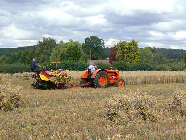 Harvesting With Reaper And Binder 11 Alan Murray Rust