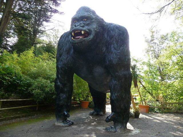 Wookey Hole  King Kong  Chris Talbot ccbysa20  Geograph Britain and Ireland