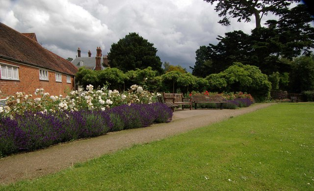 Lavender Border Forty Hall Rose Garden 169 Julian Osley