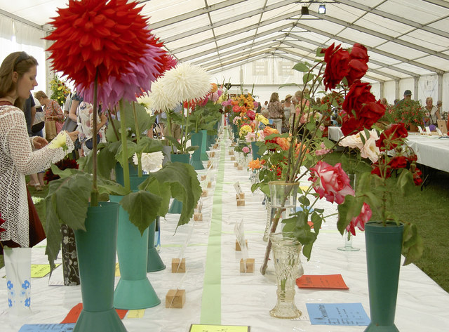 Image result for inside the flower tent