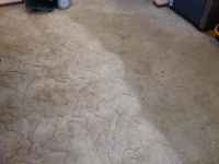 Z Best Carpet Care