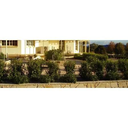 elegant landscaping & design