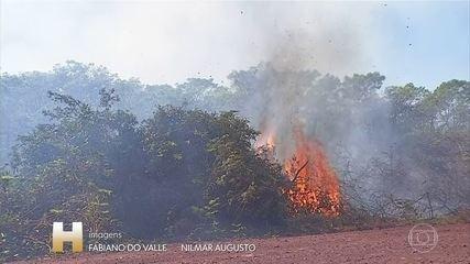 Seca no Pantanal dificulta combate a incêndio e aviões e ...
