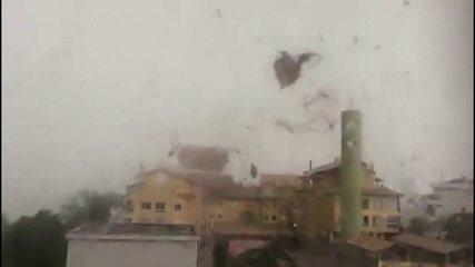 Trigueiro: 'Onda de frio e ciclone afastam a nuvem de gafanhotos da Região Sul'