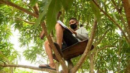 Jovem sobe no alto de árvore para melhorar sinal de internet e assistir aulas no Pará