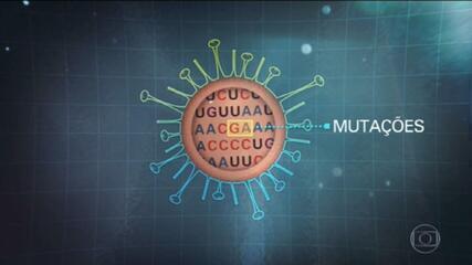 Entenda como surgem as variantes dos vírus e por que a delta preocupa na pandemia de Covid