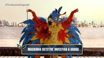 Maskinha detective investigates the Macaw