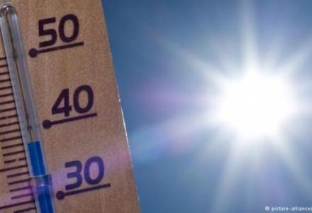 39978959_303_101718505 الأطفال أكثر عرضة من غيرهم لضربة الشمس في السيارة Actualités