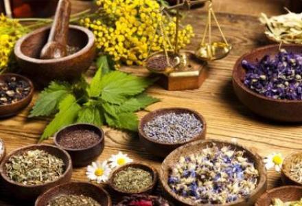 63_1629970334 المغرب يواصل تطوير قطاعه الزراعي ويصبح الثاني عالميا في إنتاج النباتات الطبية والعطرية فلاحة