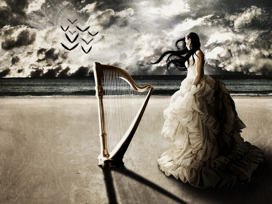 Cute Guitar Wallpapers Hd Harp Wallpapers Wallpaper High Definition High Quality