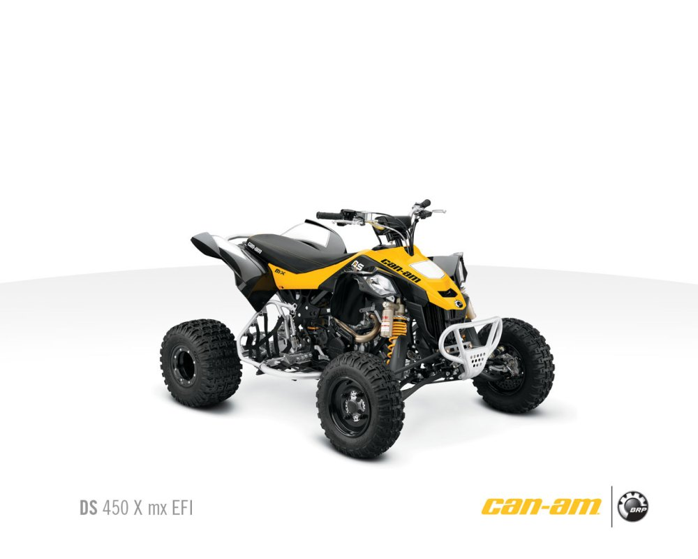 medium resolution of can am ds 250 wiring diagram simple wiring schema ds 250 nerf bars ds 250 wiring diagram