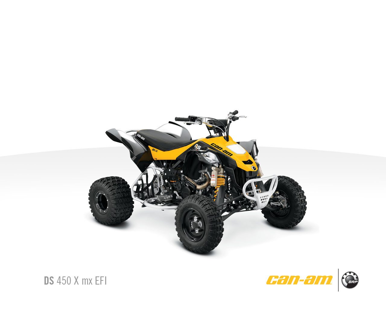 hight resolution of can am ds 250 wiring diagram simple wiring schema ds 250 nerf bars ds 250 wiring diagram
