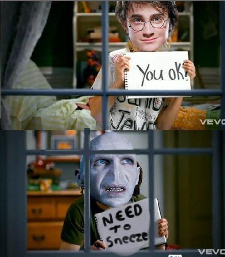 Voldemort Iphone Wallpaper Funny Harry Potter Lol Voldemort Image 216999 On