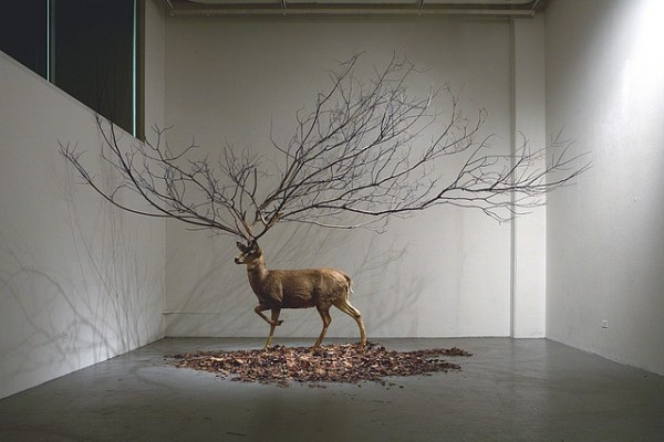 How To Set A Gif As Your Wallpaper Iphone Deer Sculpture Surreal Tree Image 222100 On Favim Com