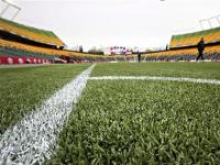 Men's World Cup could be played on artificial turf: FIFA