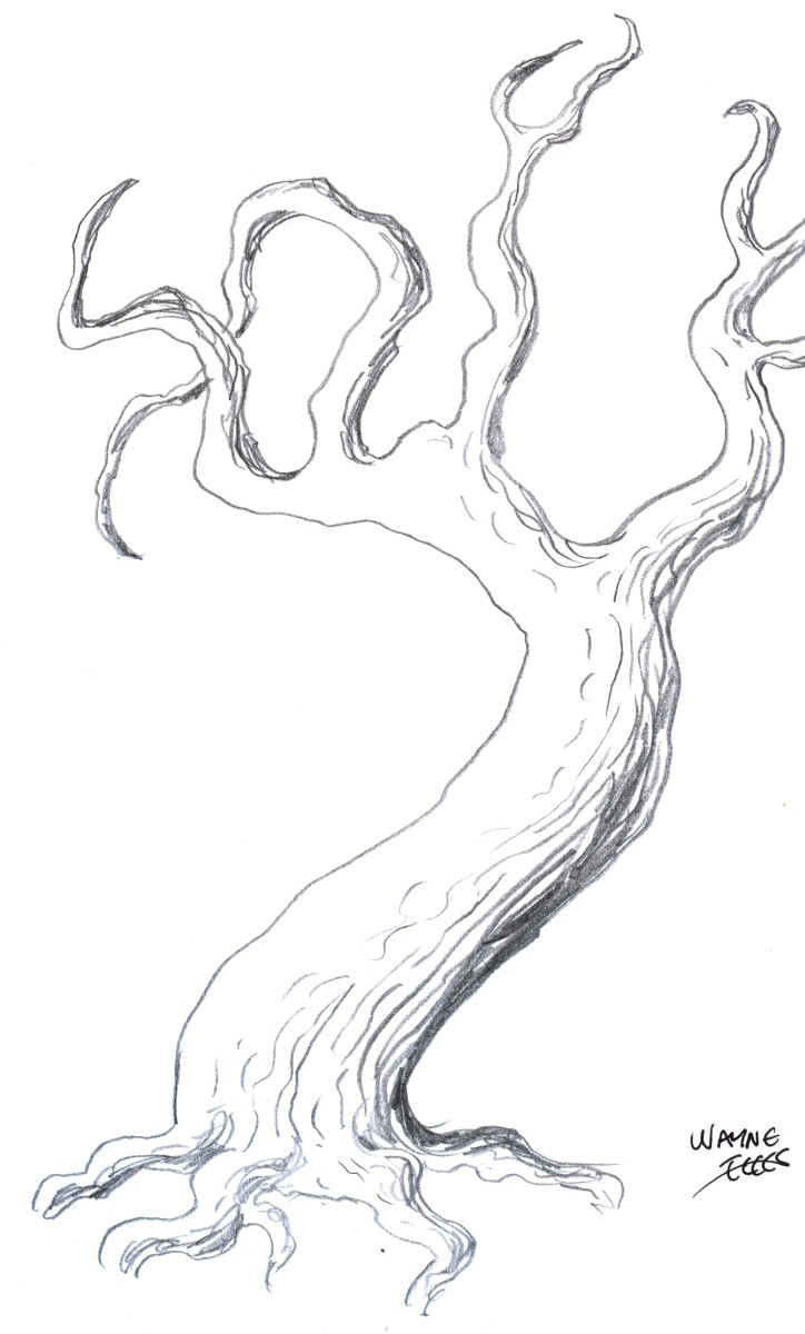 How to draw a tree, drawing tutorial of drawing a tree.