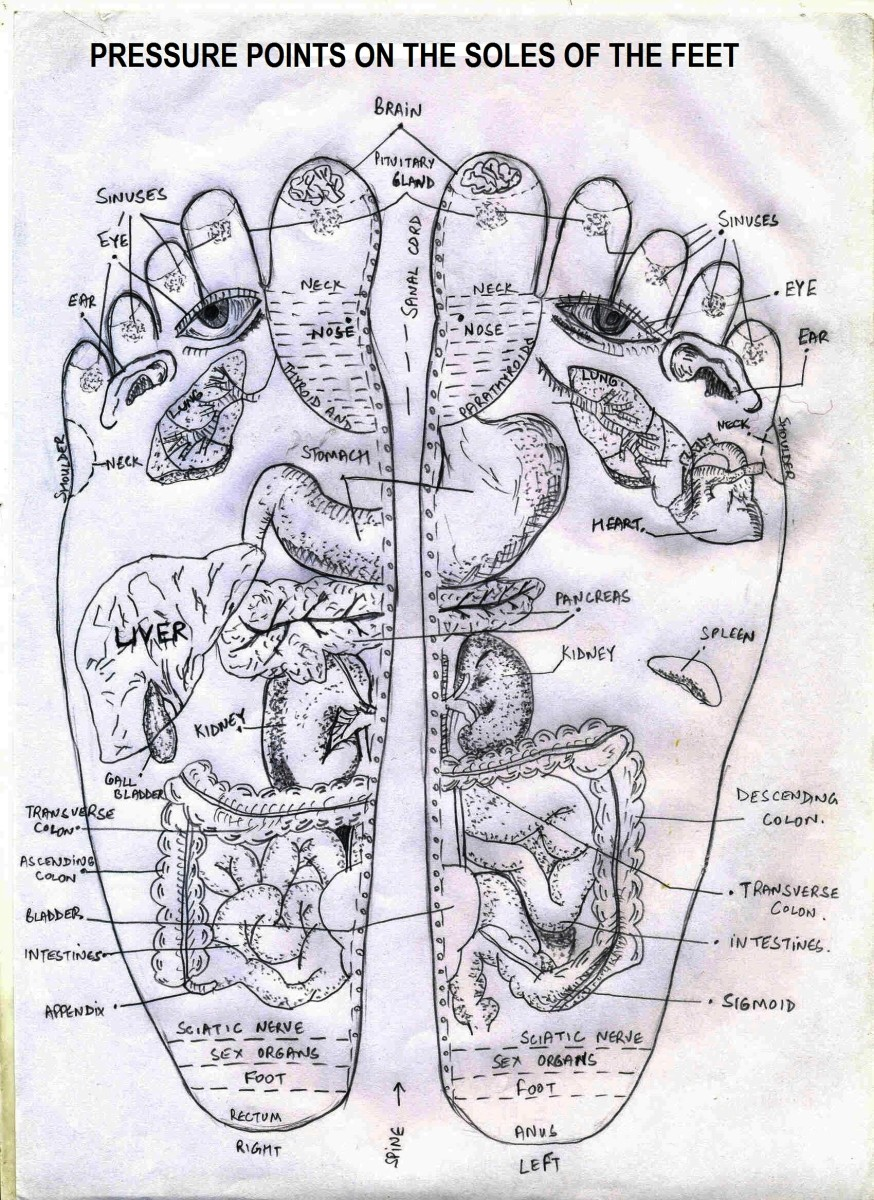 acupressure diagram of pressure points 1992 honda accord engine in hands and foot complete person