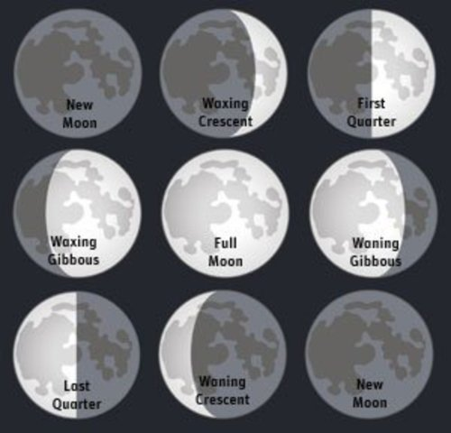 small resolution of Phases Of The Moon - Lessons - Blendspace