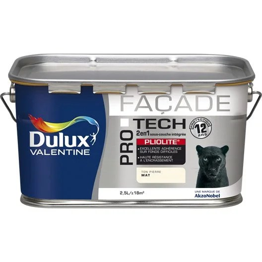 Peinture Faade Protech Pliolite DULUX VALENTINE Blanc 2