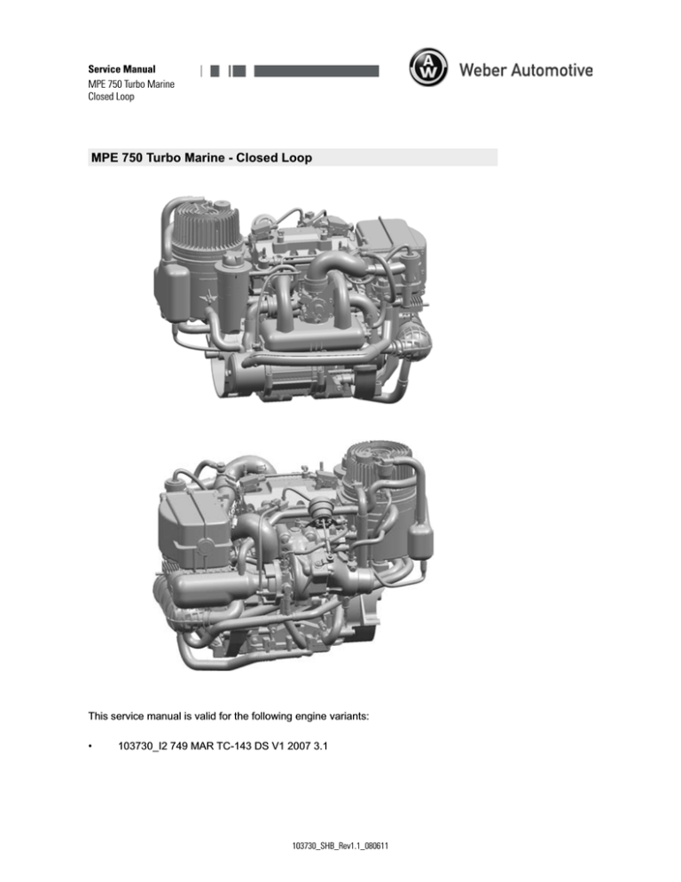 Weber Automotive MPE 750 Turbo Marine Service manual