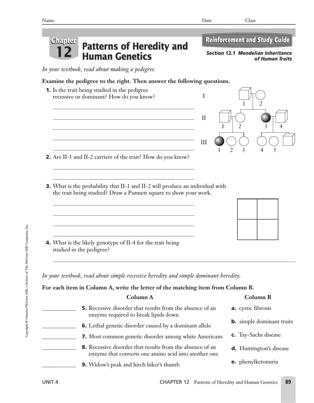 medium resolution of Inherited Traits Worksheet   Printable Worksheets and Activities for  Teachers