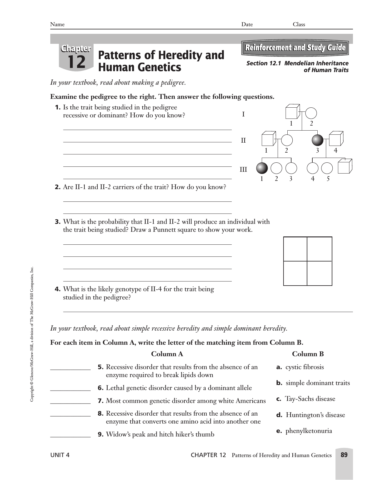 hight resolution of Inherited Traits Worksheet   Printable Worksheets and Activities for  Teachers