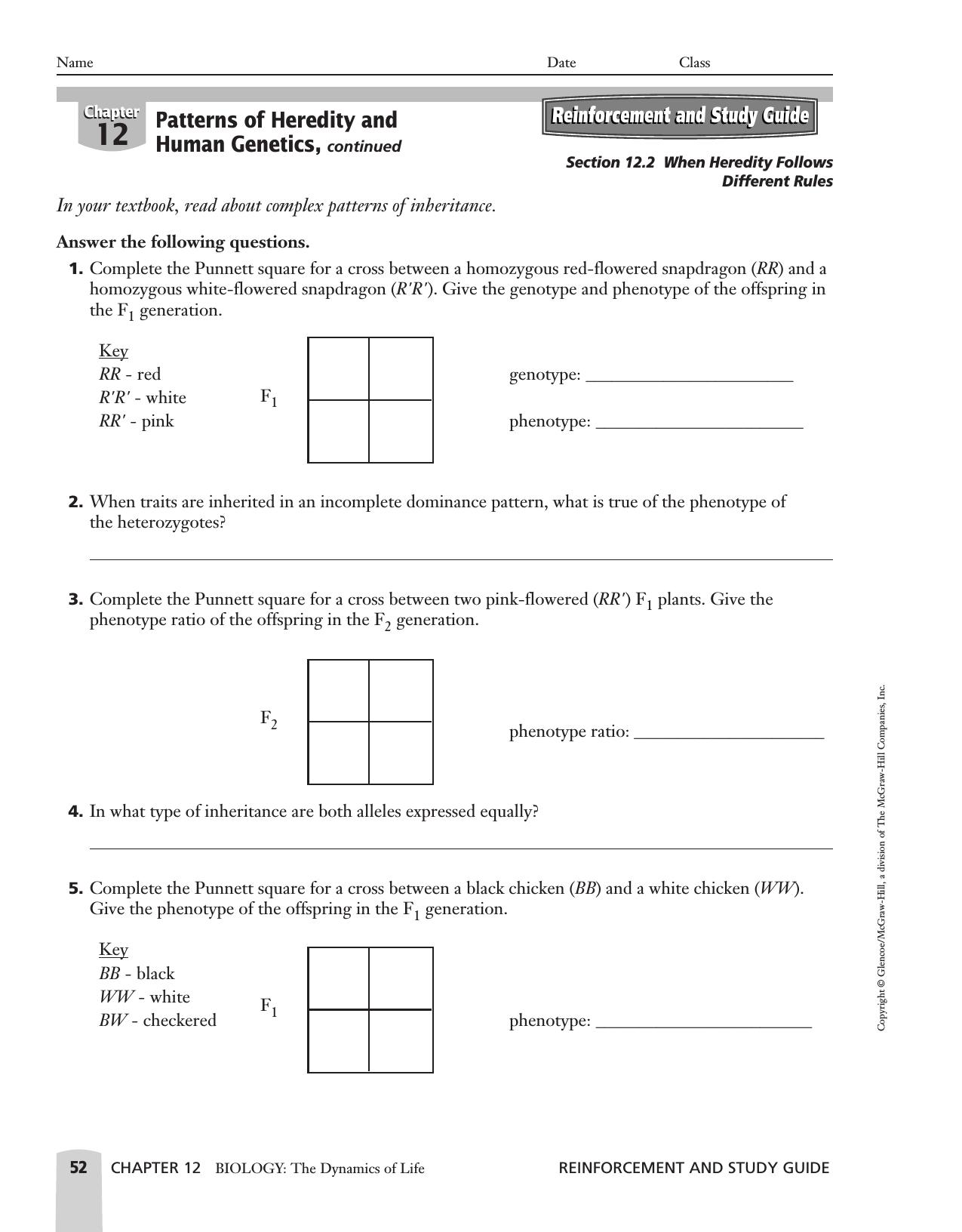 Complex Patterns Of Inheritance Worksheet