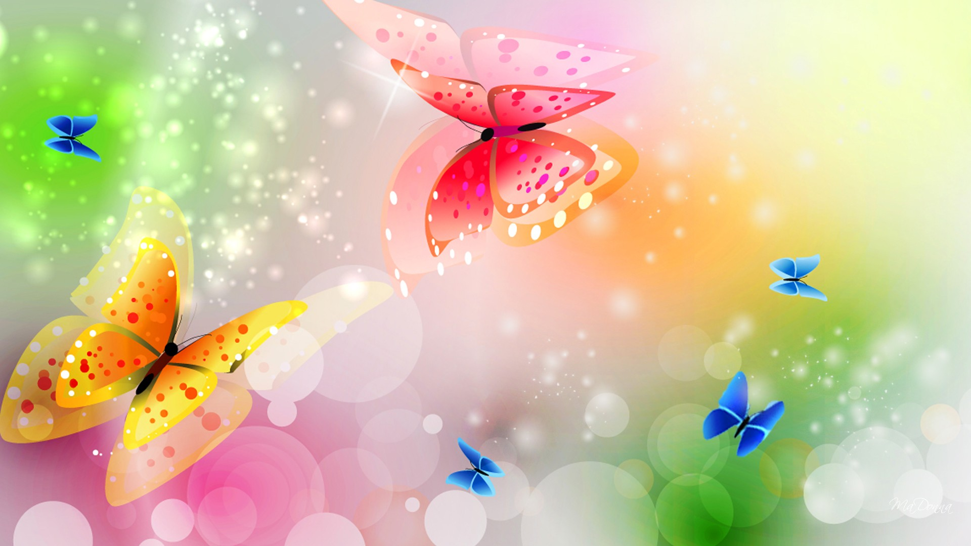 butterfly wallpapers best wallpapers