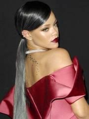rihanna gray hair ponytail