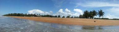 Shell Beach in Region One