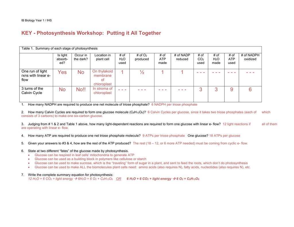 Nidecmege Atp Worksheet Answer Key