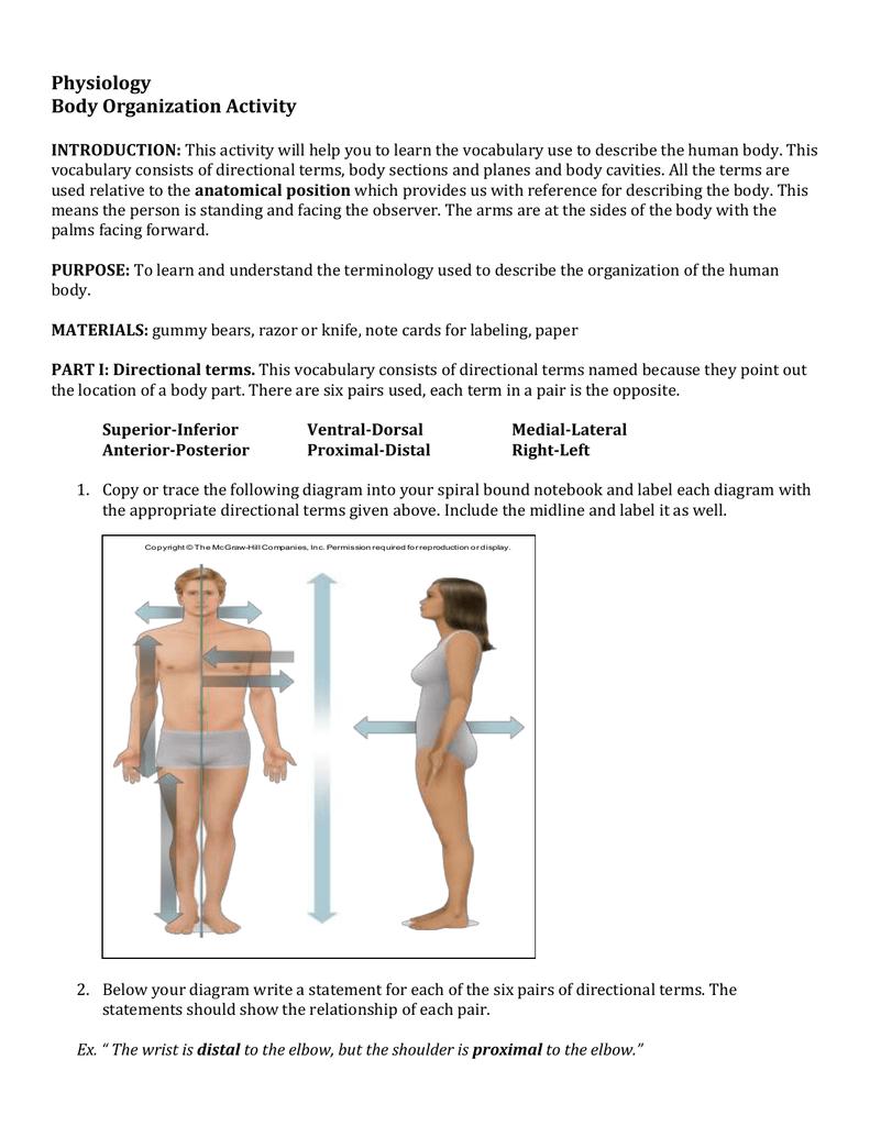 medium resolution of body cavity diagram labeled
