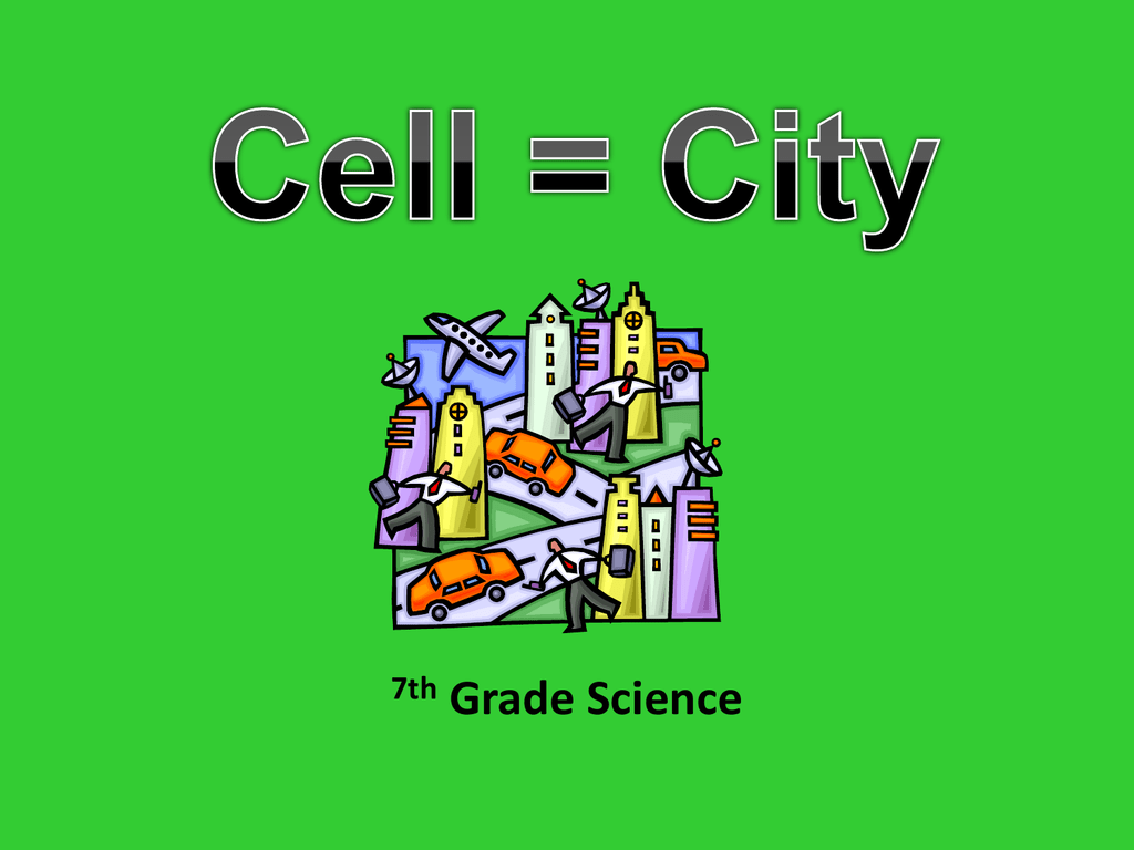 hight resolution of Cell City Analogy
