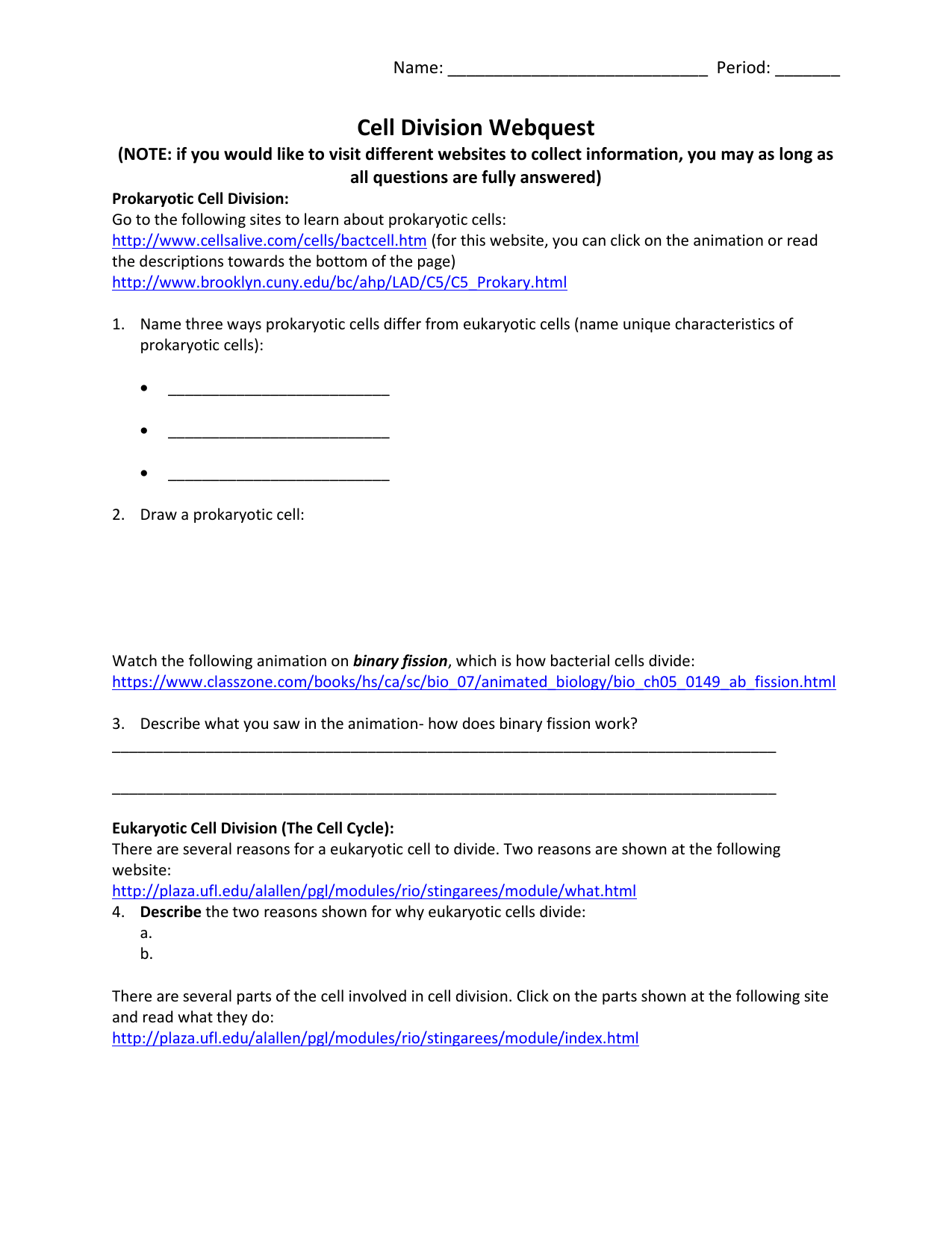 Photosynthesis Matching Worksheet Free