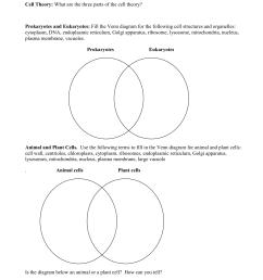 mitochondria vs chloroplast venn diagram cell organelles worksheet  [ 1275 x 1651 Pixel ]