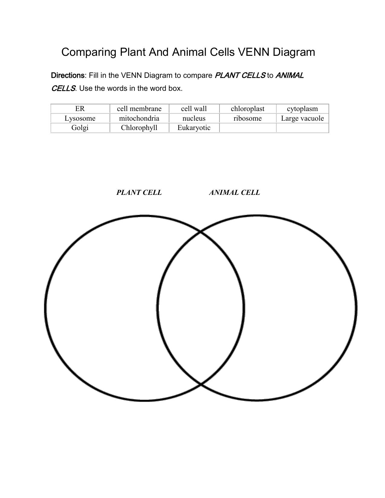 Comparing Eukaryotic And Prokaryotic Cells Venn Diagram