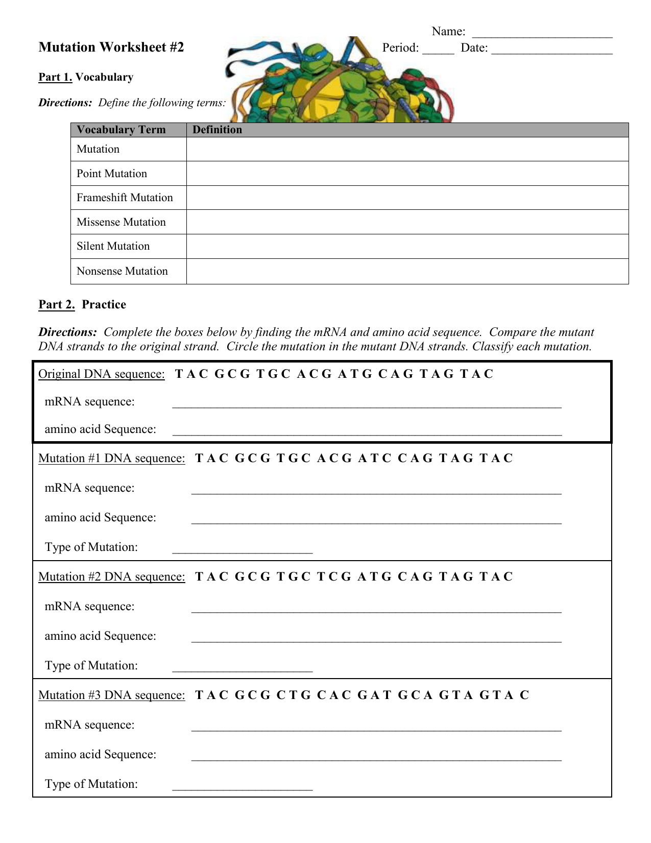 Genetic Mutation Worksheet Answer Key