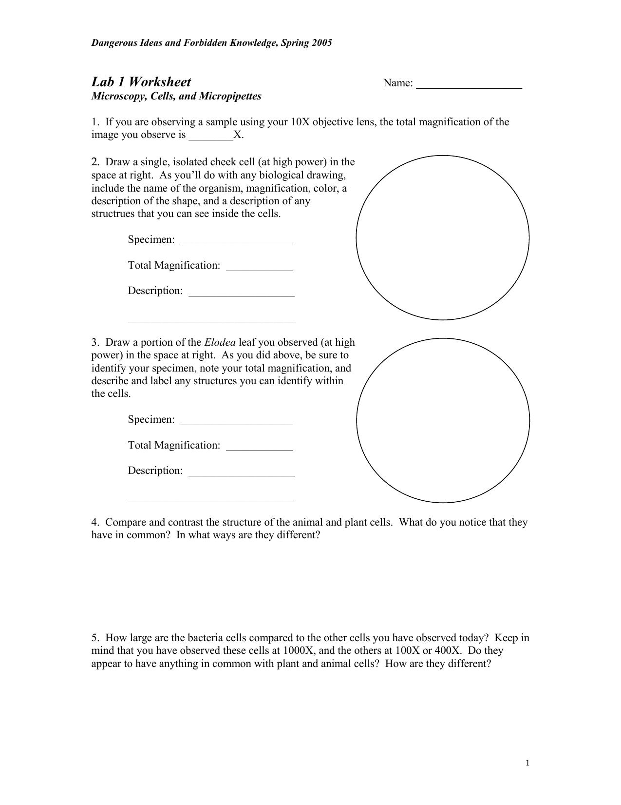 Pond Water Lab Worksheet