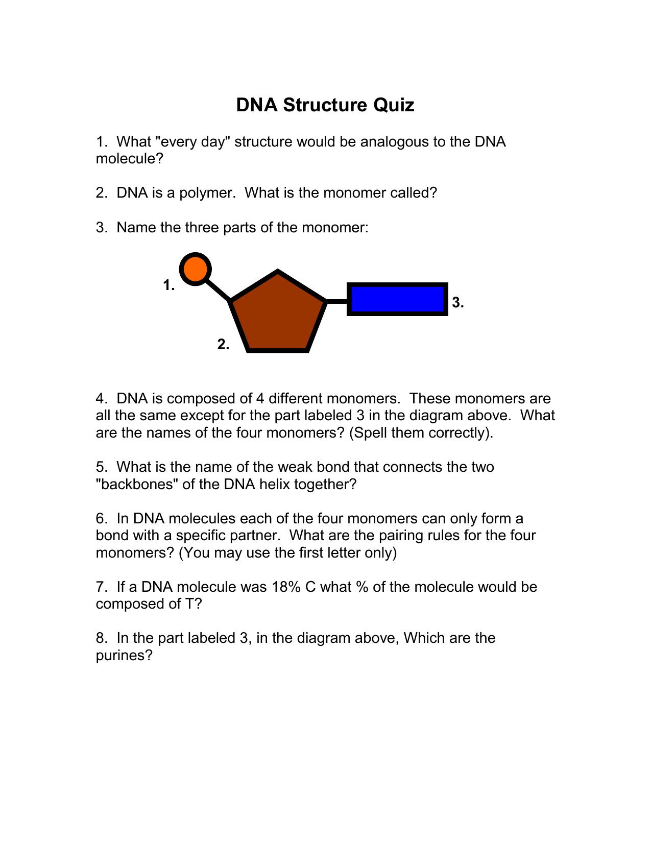 Nitrogenous Base Structure Quiz