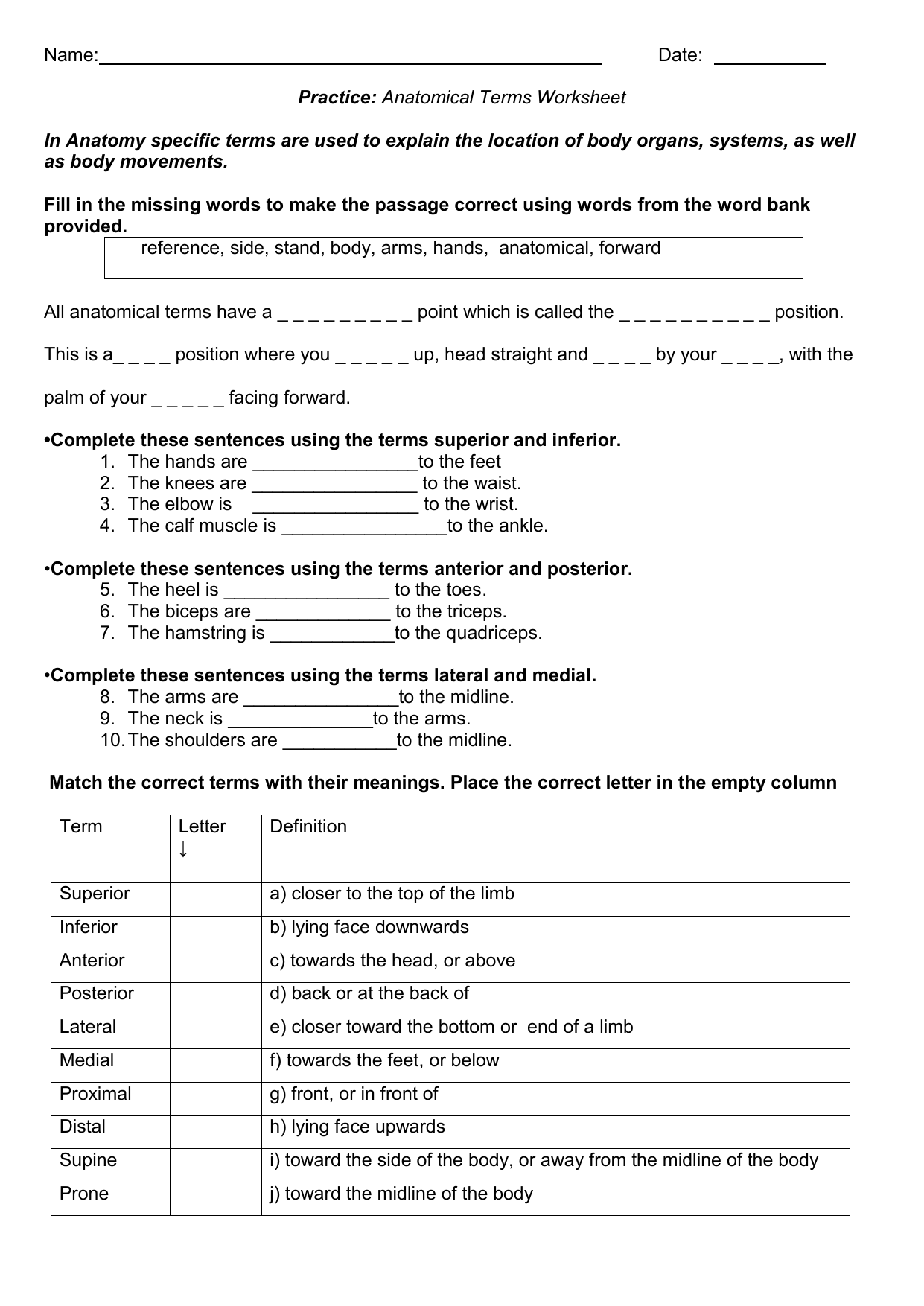 Printables Of Anatomical Directional Terms Worksheet
