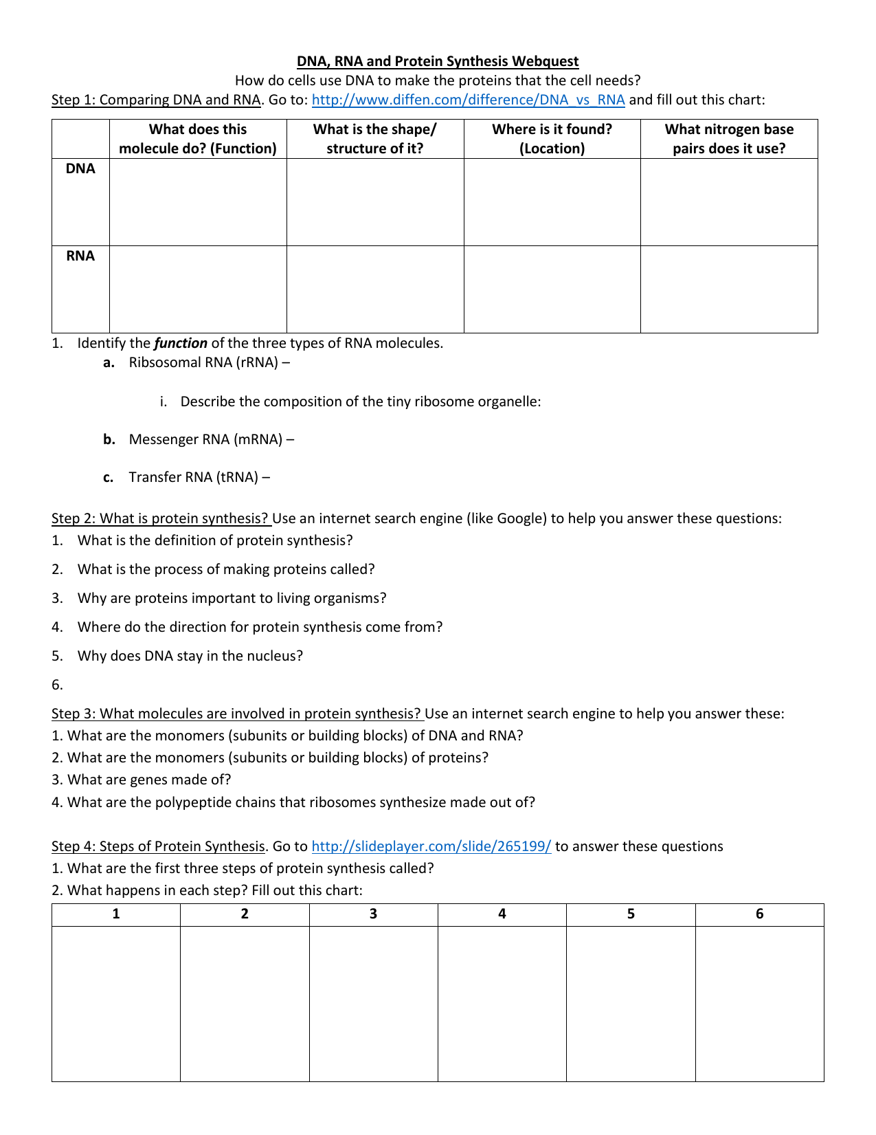 Dna Rna Protein Synthesis And Mutation Worksheet Answers