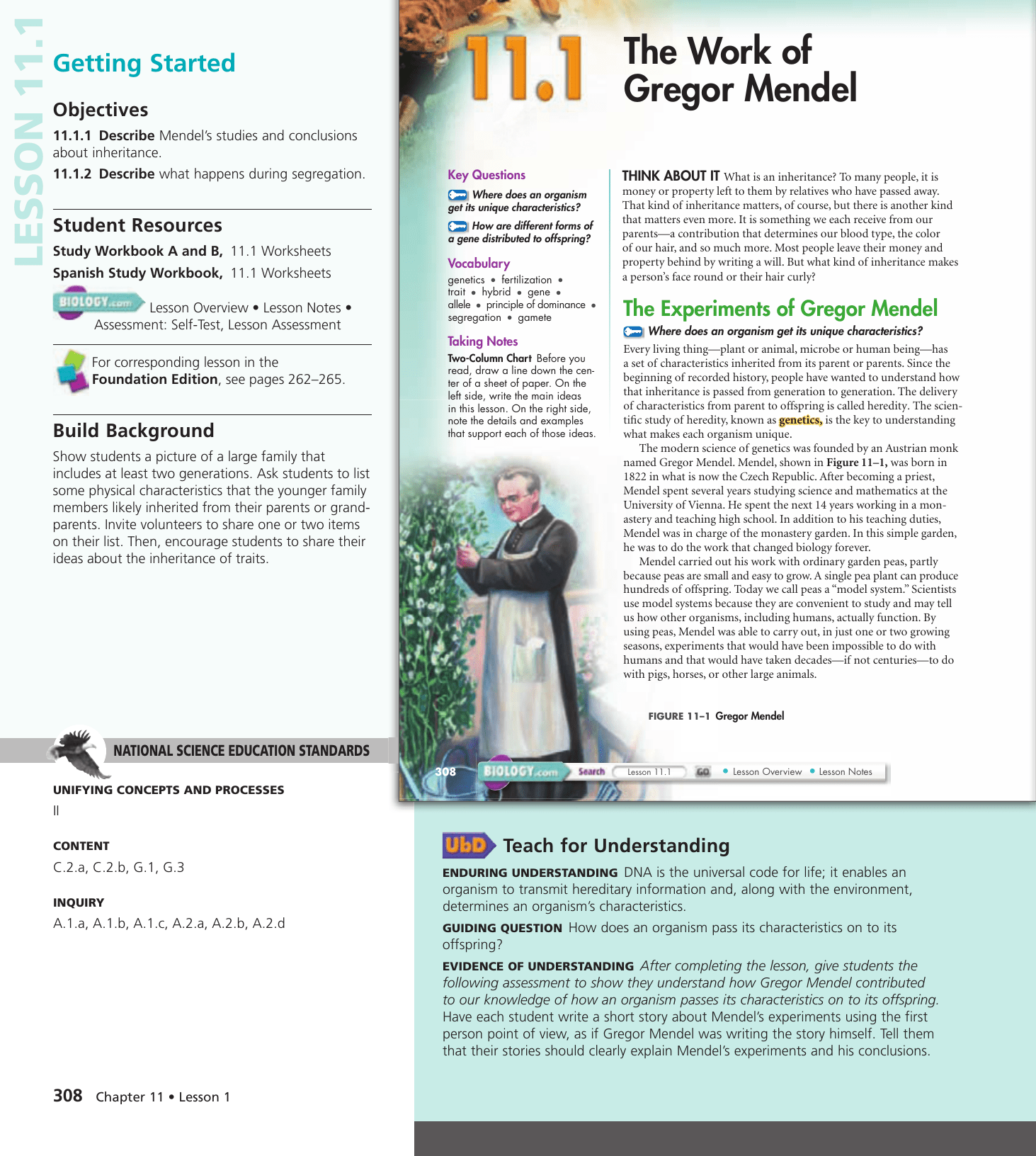 Biology 111 The Work Of Gregor Mendel Worksheet Answers