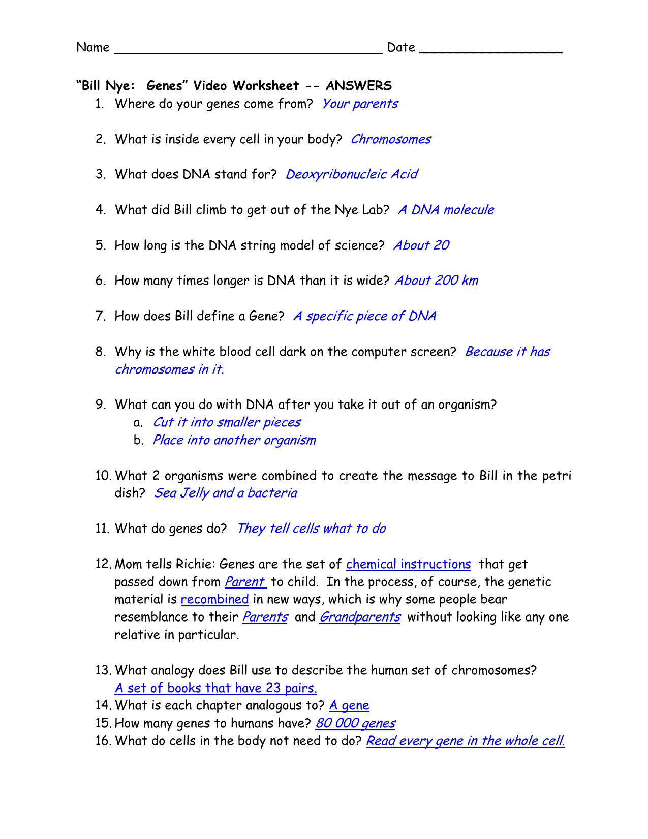 Dna The Genetic Material Worksheet Answers