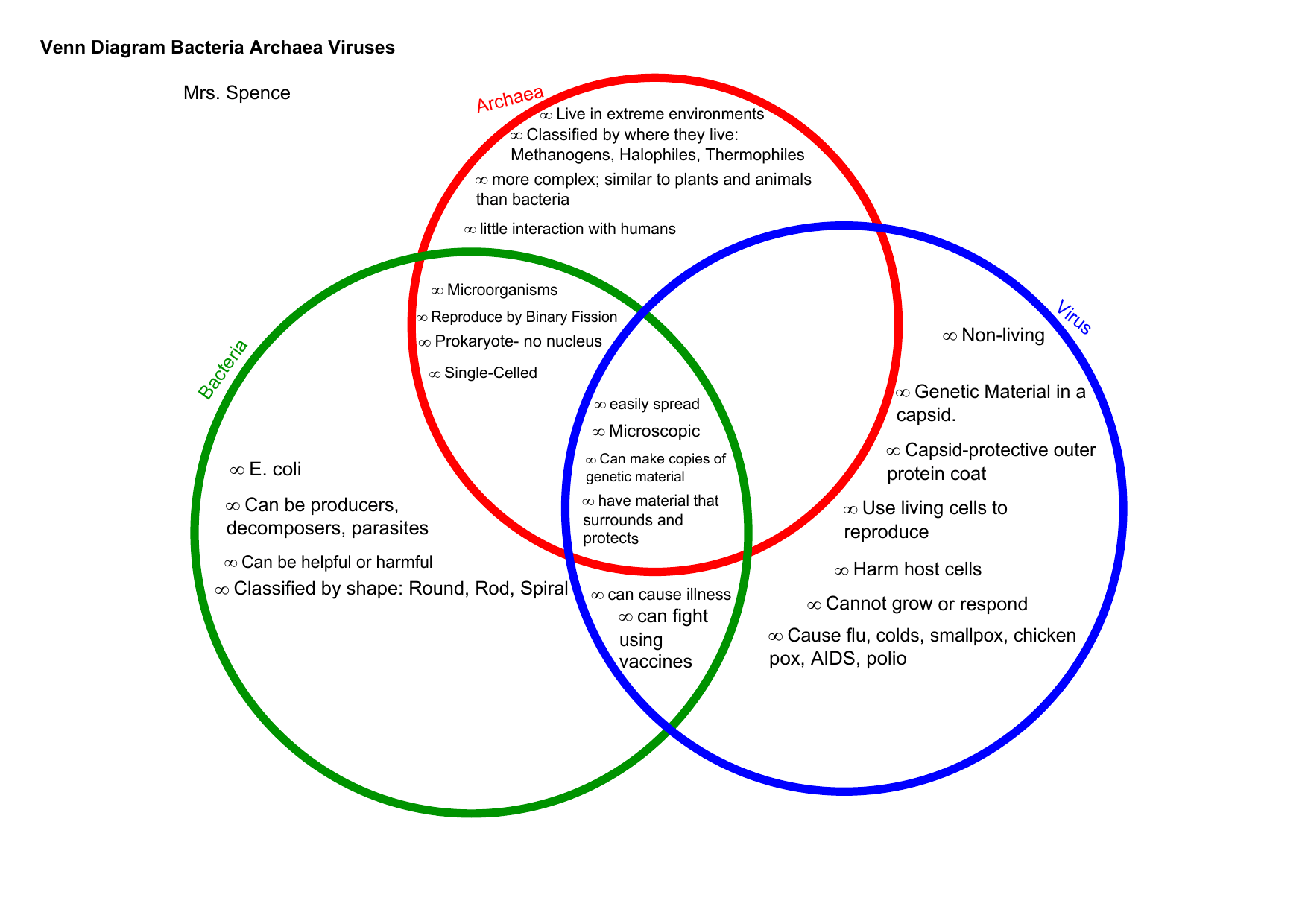 34 Bacteria And Viruses Venn Diagram