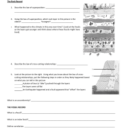 Mystery Science Fossil Worksheet   Printable Worksheets and Activities for  Teachers [ 1651 x 1275 Pixel ]
