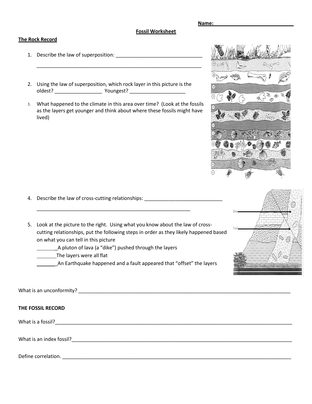 hight resolution of Mystery Science Fossil Worksheet   Printable Worksheets and Activities for  Teachers