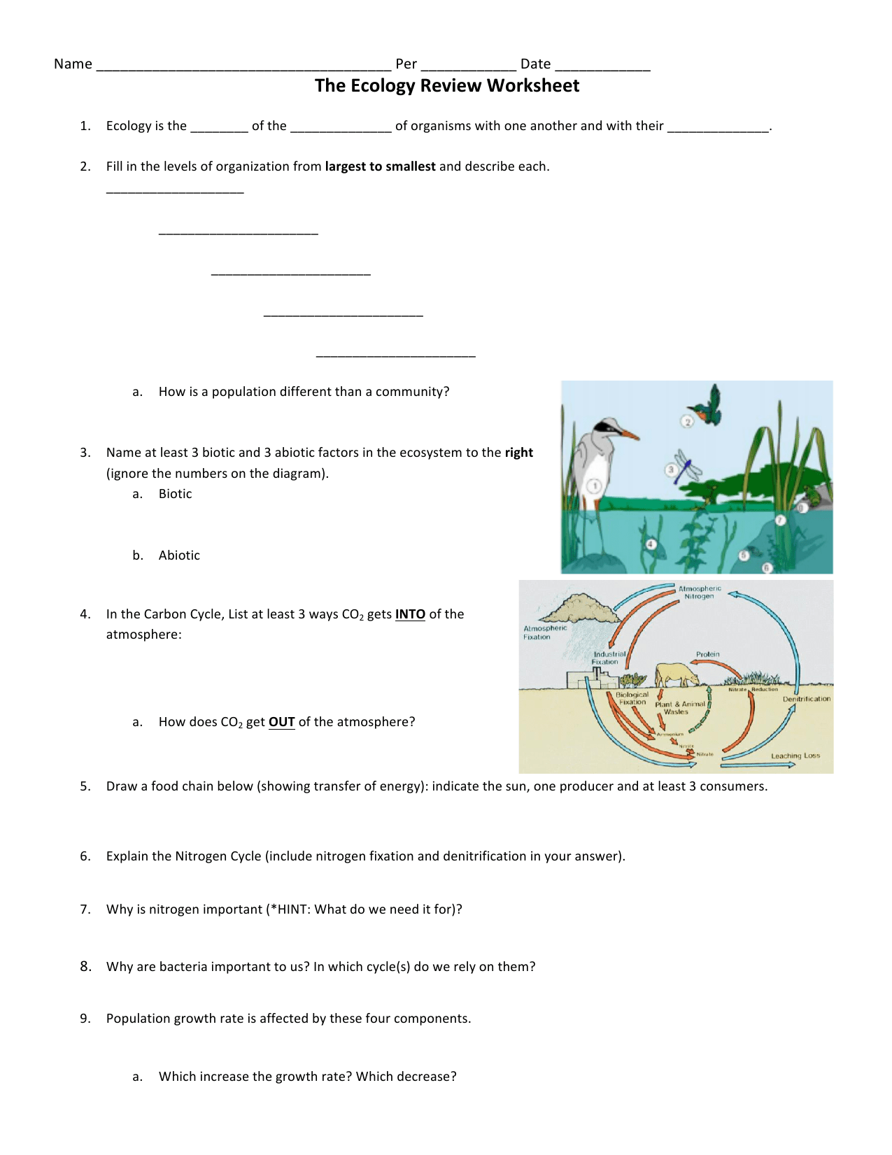 hight resolution of The Ecology Review Worksheet